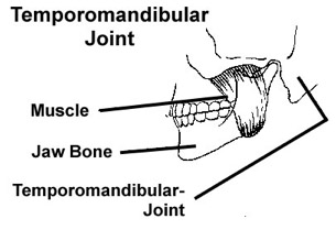 tmj-joint
