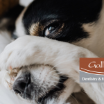 TMJ Dentist Dr.Mike Gallagher-Eden Prairie Dentist Office-Gallagher Dentistry and Facial Pain Center-TMJ Diagnosis and Treatment help with sleep positions